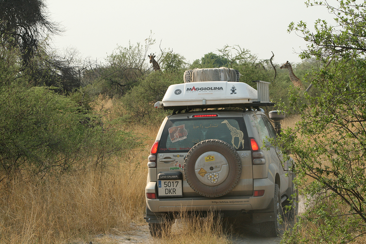 africa-2008-2788