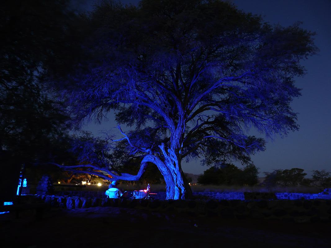 africa-2008-1