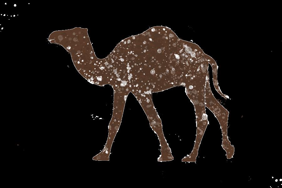 camello icono